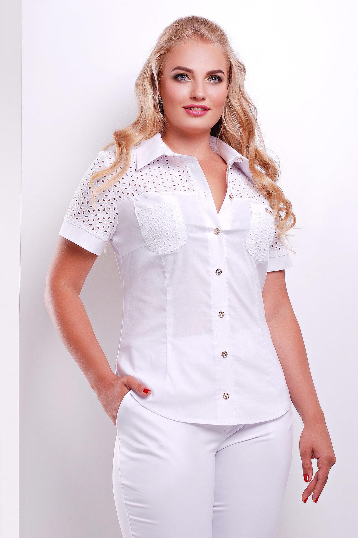 0ffca5b41a7 женская блузка белая большого размера. блуза Фауста-Б к р. Цвет
