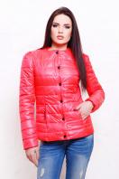 короткая женская куртка на осень цвета пудра. куртка Квин. Цвет: ультра розовый купить
