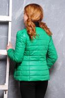 короткая женская куртка на осень цвета пудра. куртка Квин. Цвет: зеленый купить
