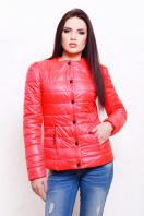короткая женская куртка на осень цвета пудра. куртка Квин. Цвет: коралл купить