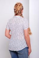 Темно-синяя ситцевая блуза батал с морским принтом. блуза Якира-Б к/р. Цвет: белый-якорь