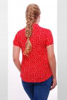 Темно-синяя ситцевая блуза батал с морским принтом. блуза Якира-Б к/р. Цвет: красный-якорь