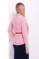 рубашка в полоску для работы. блуза Рубьера д/р. Цвет: белый-красная полоска купить
