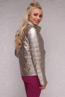 куртка цвета пудры на весну. Куртка 18-126. Цвет: золотой купить