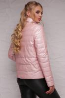 короткая куртка для полных женщин. Куртка 18-126(б). Цвет: пудра купить