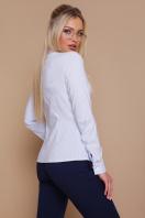 серая рубашка в полоску. блуза Рубьера д/р. Цвет: голубая м.полоска купить
