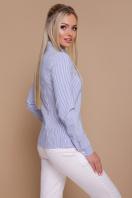 полосатая рубашка с длинным рукавом. блуза Рубьера д/р. Цвет: синяя м. полоска купить
