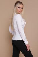 белая блузка с рюшами. блуза Амина д/р. Цвет: белый купить