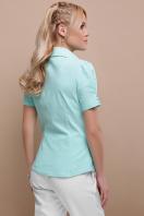 персиковая блузка с коротким рукавом. блуза Эльза к/р. Цвет: мята в Украине
