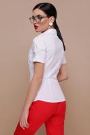 персиковая блузка с коротким рукавом. блуза Эльза к/р. Цвет: белый в Украине