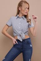 . блуза Рубьера к/р. Цвет: серая м. полоска в интернет-магазине