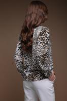 леопардовая блузка с воротником стойкой. Леопард блуза Эльвира д/р. Цвет: принт купить