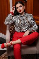 леопардовая блузка с воротником стойкой. Леопард блуза Эльвира д/р. Цвет: принт в интернет-магазине
