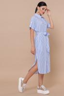 полосатое платье рубашка. платье-рубашка Дарья-2 к/р. Цвет: голубая полоска купить