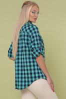 рубашка в клетку для пышных женщин. блуза Пальмира-Б д/р. Цвет: клетка мята-синий цена