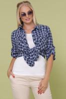 клетчатая рубашка больших размеров. блуза Пальмира-Б д/р. Цвет: клетка синий-голуб-красн купить