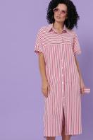 полосатое платье на пуговицах. платье-рубашка Дарья-3 к/р. Цвет: коралл полоска цена