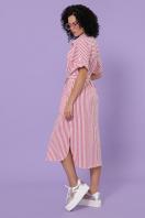 полосатое платье на пуговицах. платье-рубашка Дарья-3 к/р. Цвет: коралл полоска в интернет-магазине