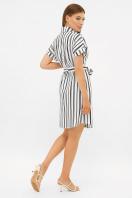 . платье-рубашка Филена к/р. Цвет: белый-черная полоса1 в интернет-магазине