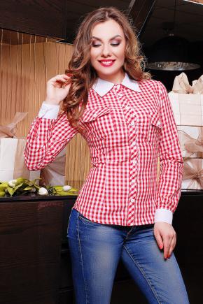 блуза Техас д/р. Цвет: красный-клетка
