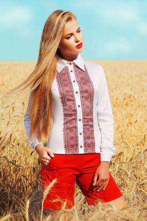 Узор К1 блуза Марта 2Н д/р. Цвет: принт