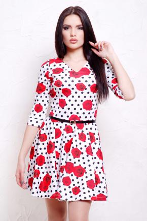 Розы-горох мелкий платье Мая д/р. Цвет: принт