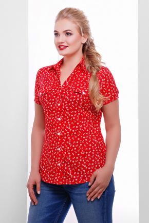 блуза Якира-Б к/р. Цвет: красный-якорь