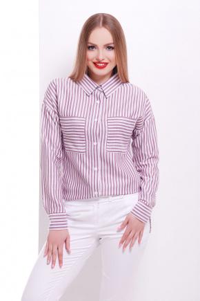 блуза Риканто д/р. Цвет: бордовая м. полоска