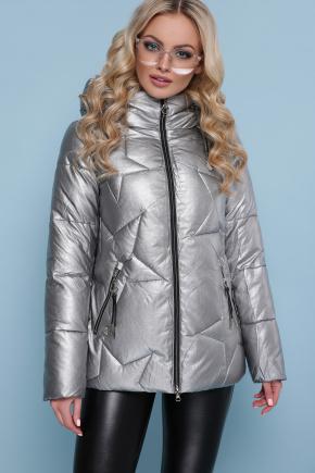 Куртка 18-146. Цвет: серебро