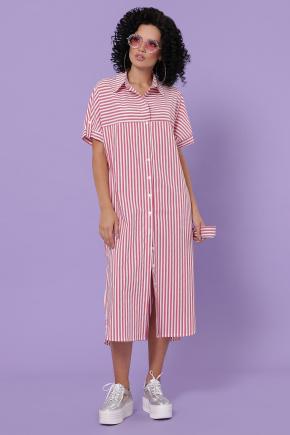 платье-рубашка Дарья-3 к/р. Цвет: коралл полоска