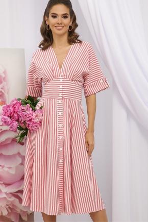 Платье Нерия к/р. Цвет: коралл полоска