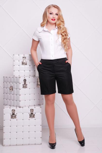 черные шорты баталы. шорты Хилтон-Б (длинные). Цвет: черный