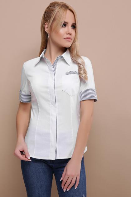 деловая белая блузка. блуза Мила к/р. Цвет: белый-серая м.полоска