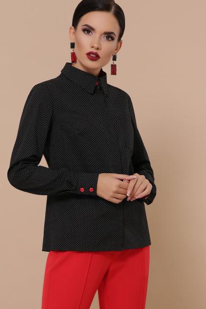 женская рубашка в горошек. блуза Вендис д/р. Цвет: черный-бел.м.горох-красн