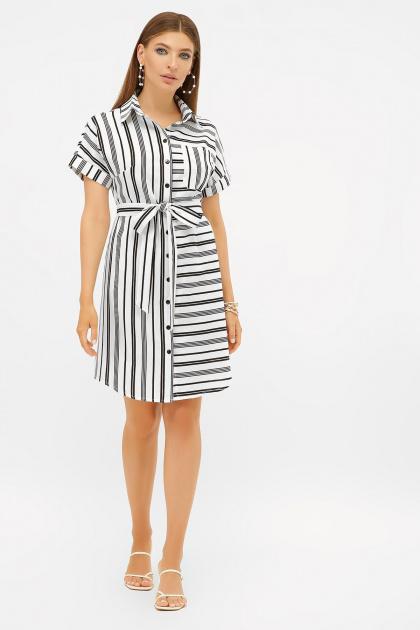 . платье-рубашка Филена к/р. Цвет: белый-черная полоса1